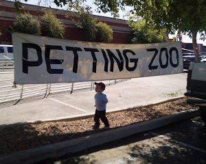 Petting Zoo Anyone??