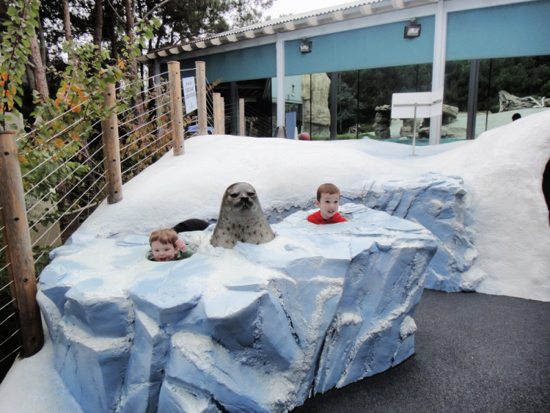 Two boys with heads popping out of an ice den exhibit with a fake seal