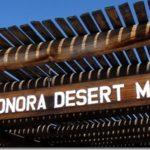 Javelinas, Snakes, Cacti Oh My!: The Arizona Sonora Desert Museum