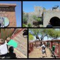 Our International Wildlife Museum Adventure!
