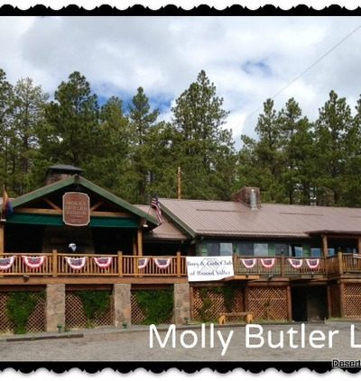 The Molly Butler Lodge in Greer