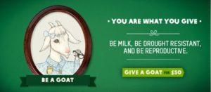 oxfam-574x250-goat_thumb.jpg