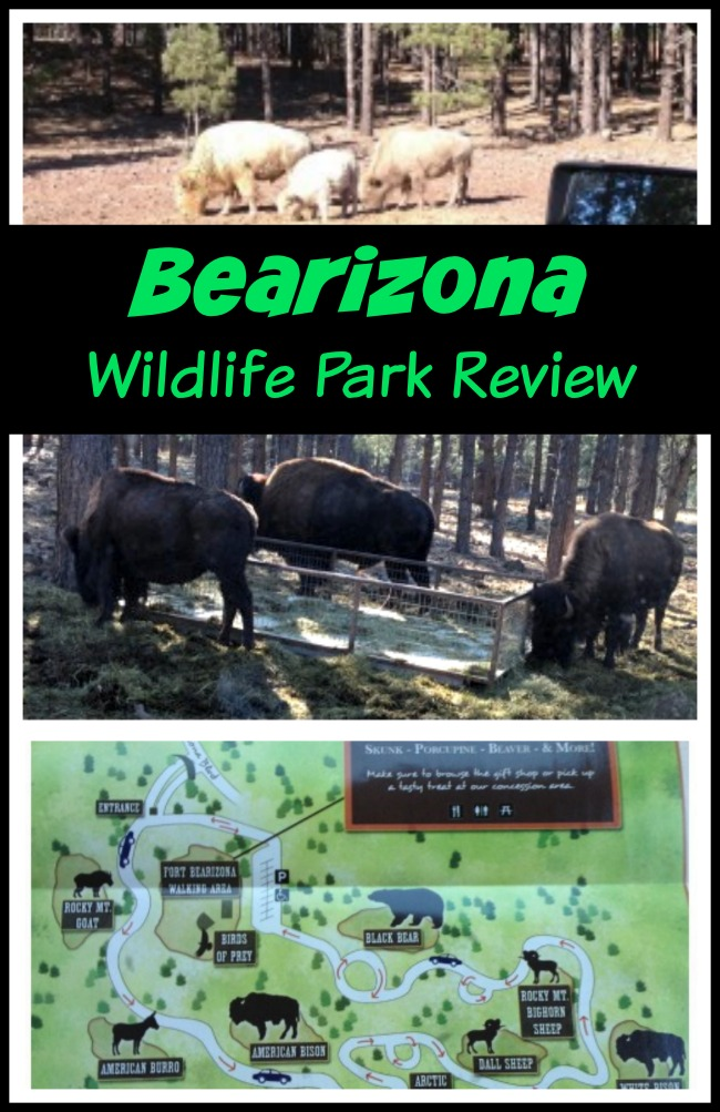 Bearizona Wildlife Park Review