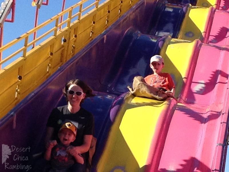 Pima County Fair Slide