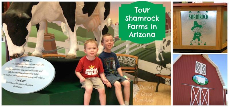 Shamrock Farms Tour2