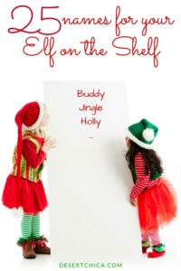 25-names-for-elf-on-shelf