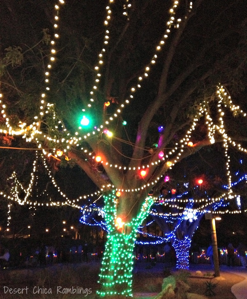 Reid Park Zoo Lights