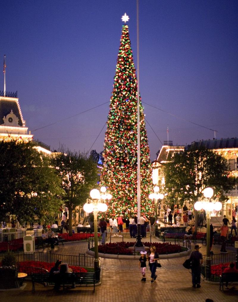 Christmas Tree on Main Street 03283_6945_119565