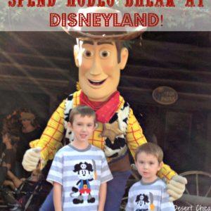 Spend Rodeo Break at Disneyland