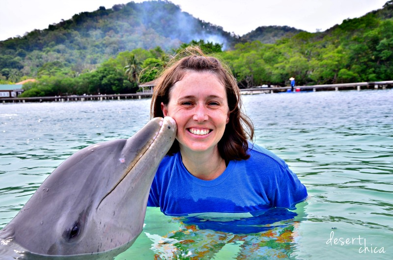 Dolphin kissing girl Anthony's Key Resort.jpg