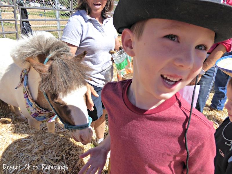 Feeding Mini Horses.jpg