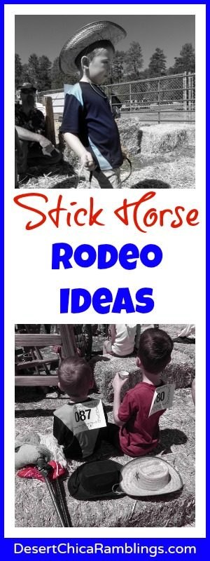 Stick Horse Rodeo Ideas.jpg