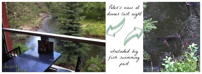 fishing swimming in alaska.jpg