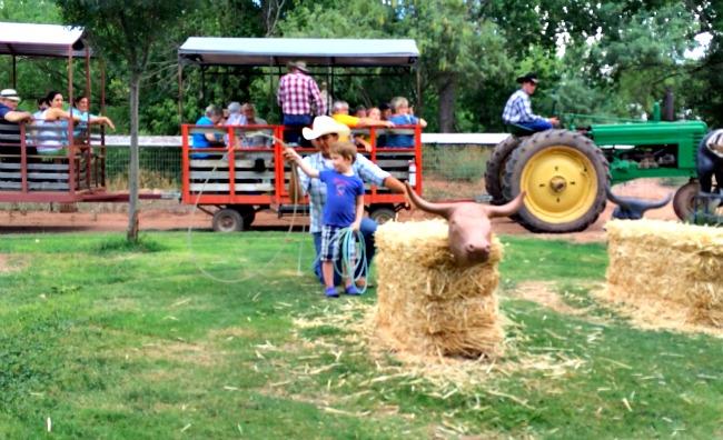 Roping steers at Blazin M Ranch