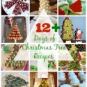 12 Days of Christmas Tree Recipes