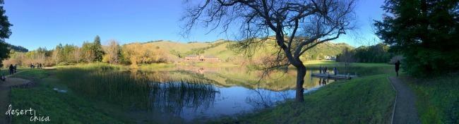 Skywalker Ranch Panoramic