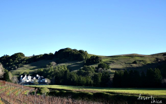 skywalker Ranch rolling green hills