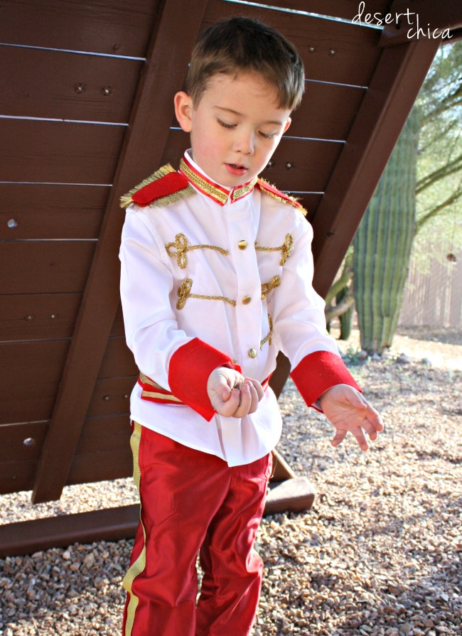 Need an adorable prince costume for your favorite little (or big) guy? Check  sc 1 st  Desert Chica & No Sew Prince Charming Costume DIY Tutorial | Desert Chica