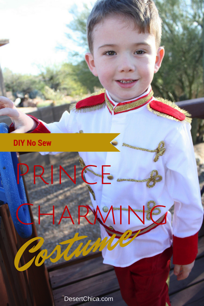 Need a Cinderella boy costume? Check out this tutorial on how to make a No Sew Prince Charming Costume, this DIY Prince Costume is perfect any little prince headed to DIsney parks or for a royal costume party.