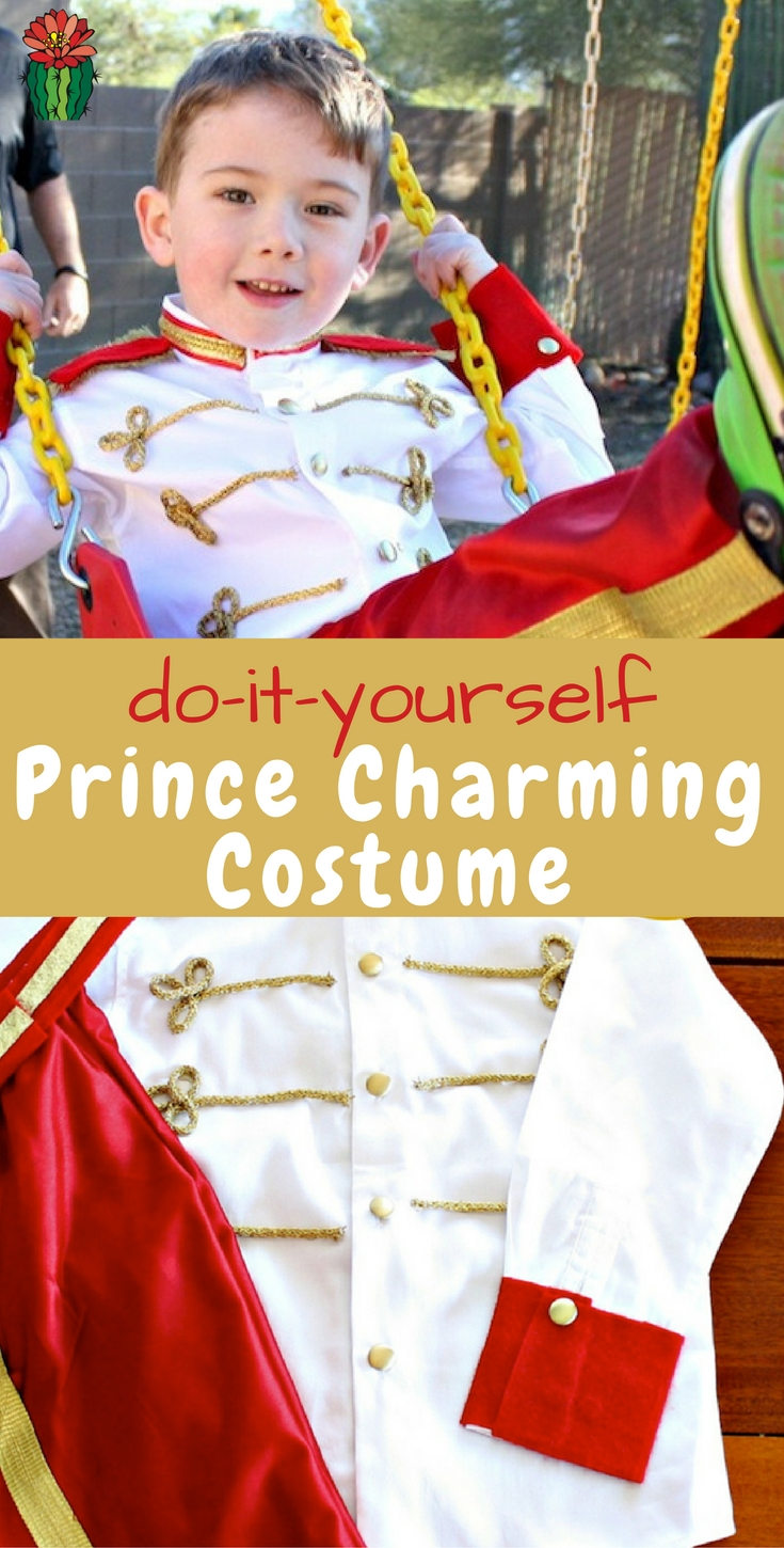 No sew prince charming costume diy tutorial desert chica need an adorable prince costume for your favorite little or big guy check solutioingenieria