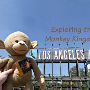 Exploring the Monkey Kingdom Los Angeles Zoo