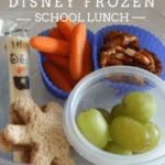 Disney FROZEN School Lunch