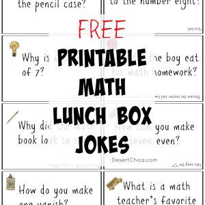 Math Lunch Box Notes