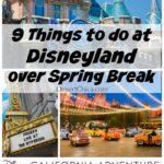 9 Things To Do at Disneyland during Spring Break