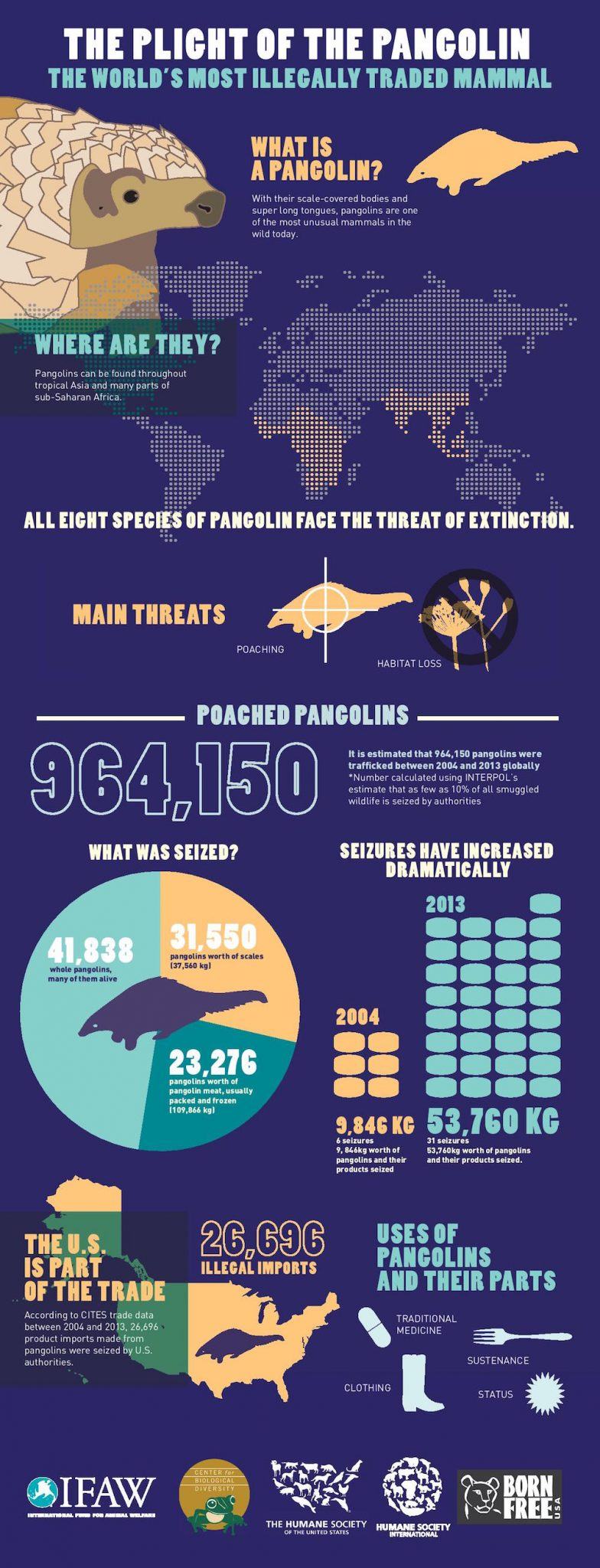 IFAW Infographic_Pangolin