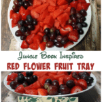 Jungle Book Red Flower Fruit Tray