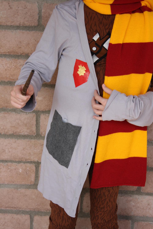 diy-potterwookie-costume-robe