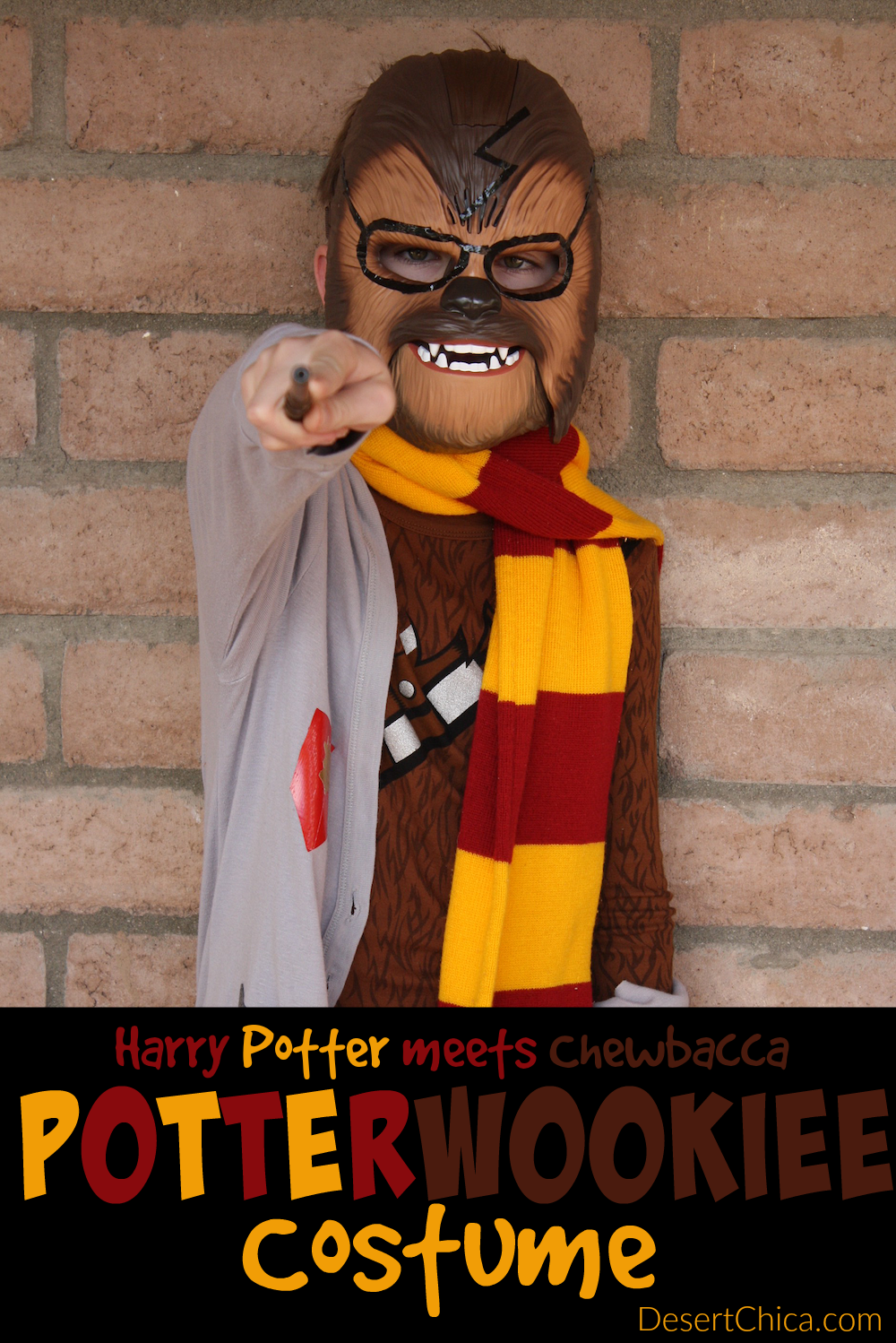 Perfect for Harry Potter and Star Wars fans, a Potterwookiee costume combines Harry Potter with Chewbacca in the Creature From My Closet Book Series.