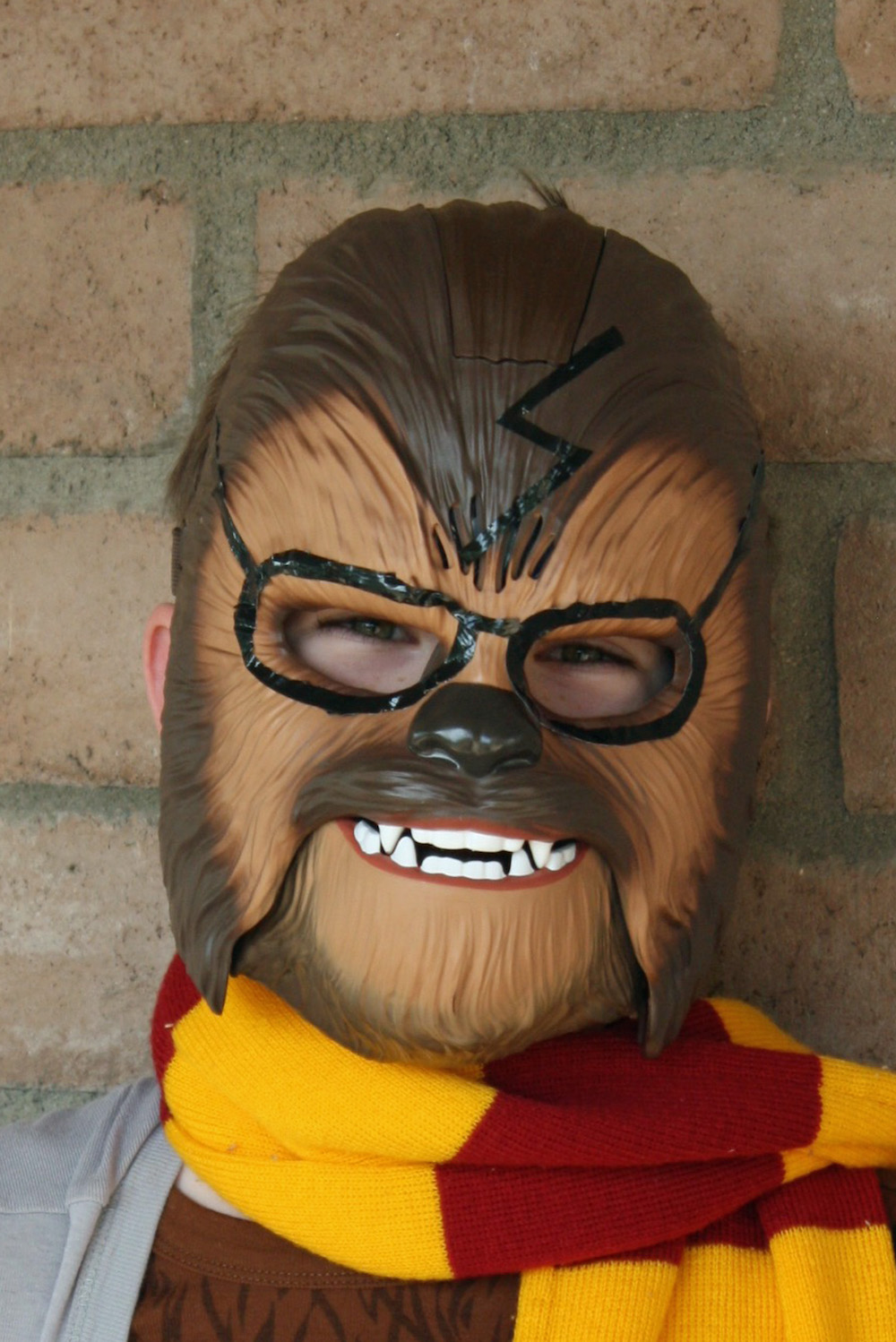 potterwookiee-costume-mask