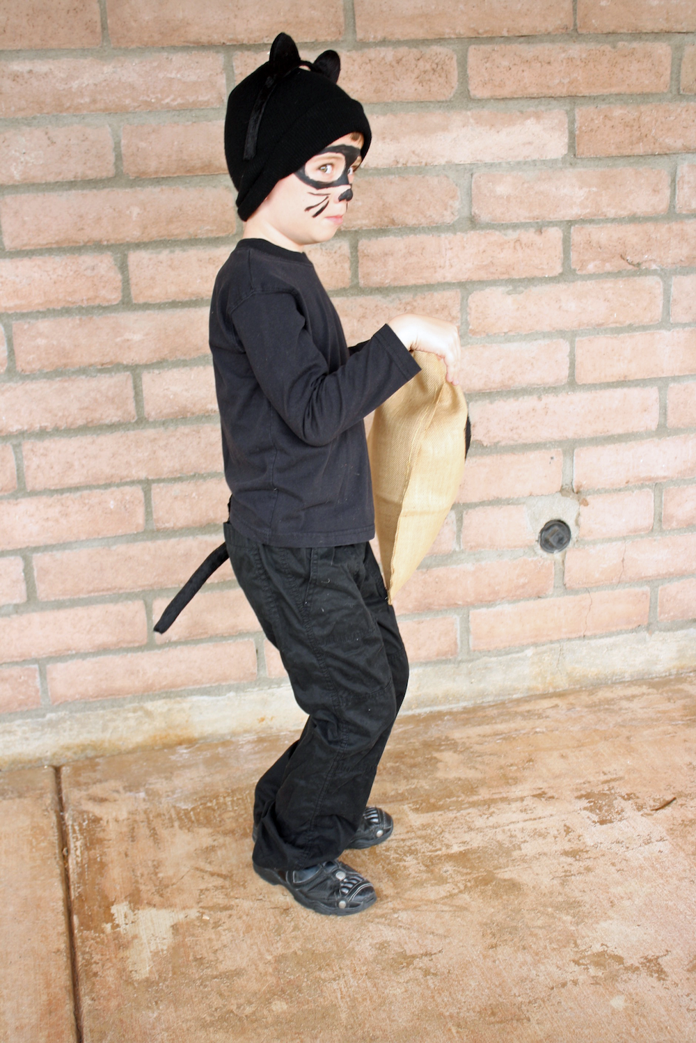 pun-costume-idea-cat-burglar