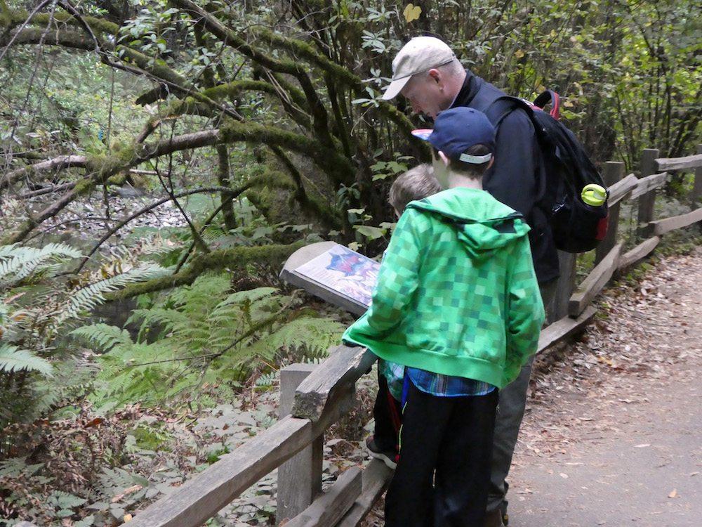 visiting-muir-woods-for-multigenerational-visit