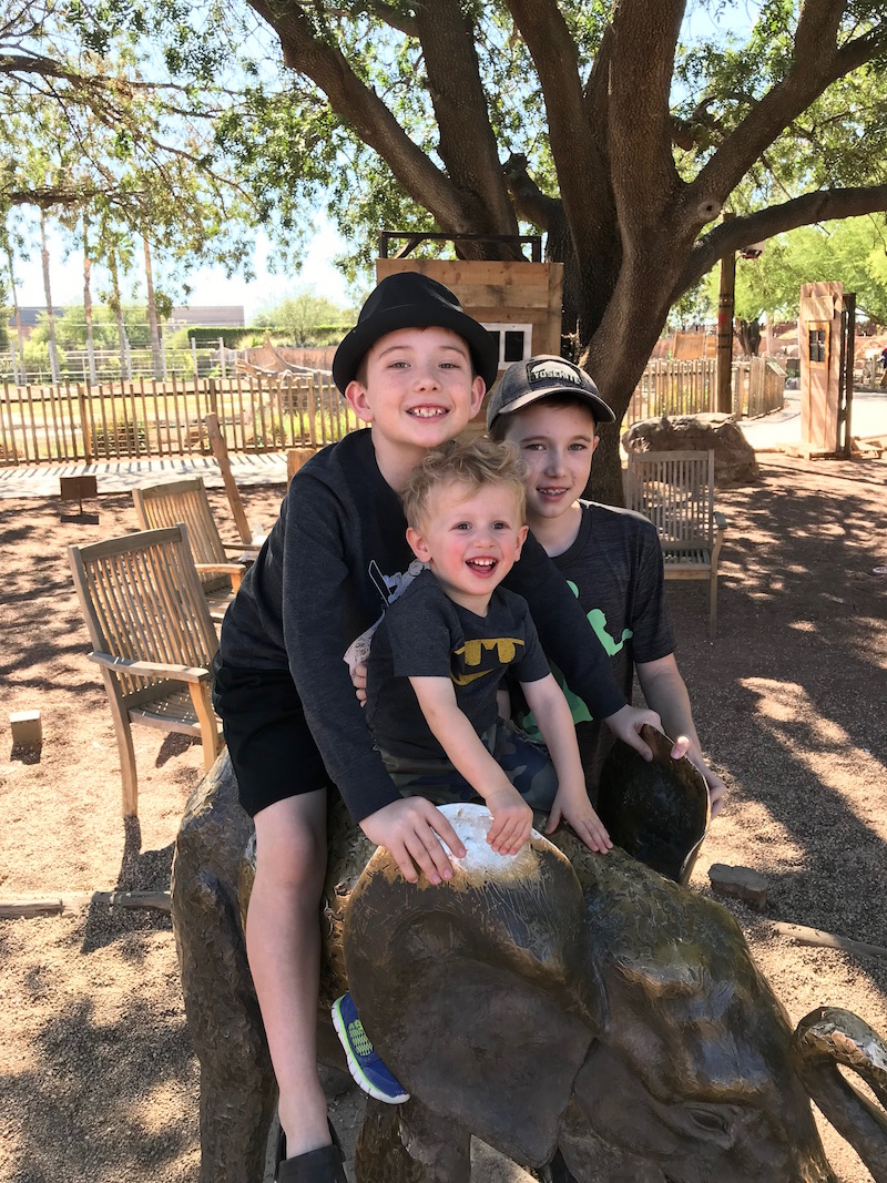 Reid Park Zoo is a great gift experience idea for kids in tucson