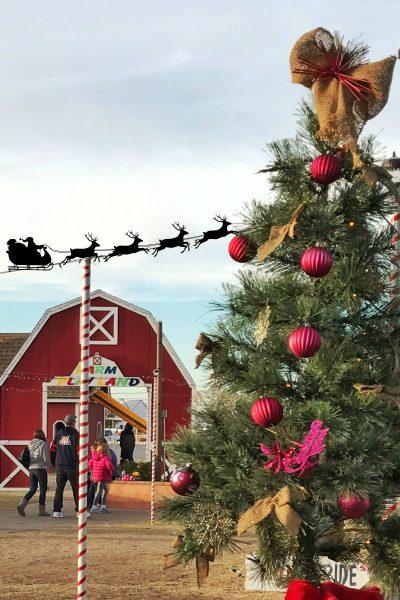 Marana Christmas On The Farm