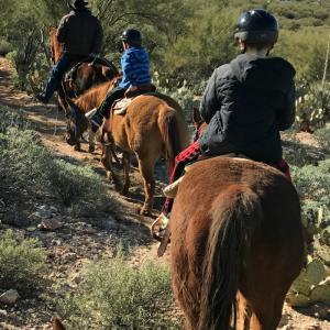 Horseback Riding in Tucson