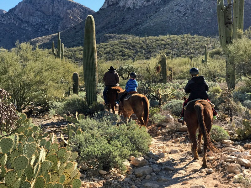 Horseback Riding at the base of the Catalina Mountains is a fun thing to do in tucson with kids