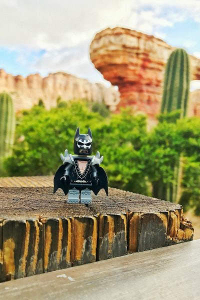 Why You Should Travel With LEGO