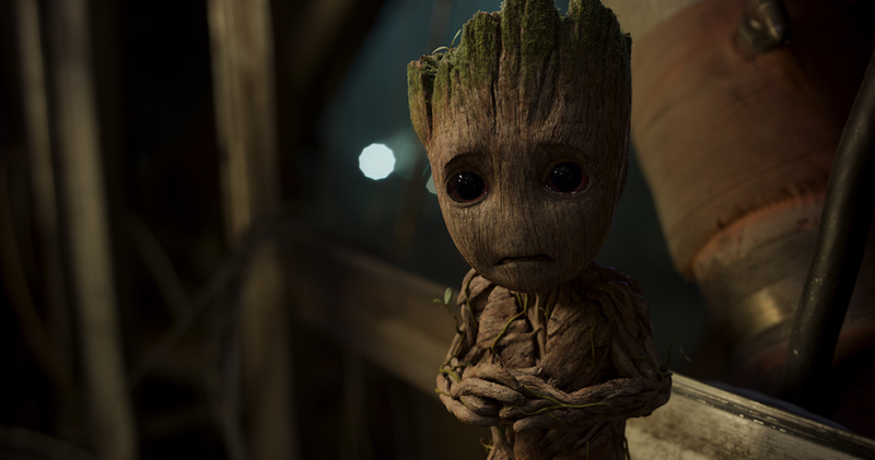 Guardians of the Galaxy Costume - Groot