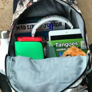 Kids Travel Gear We Pack