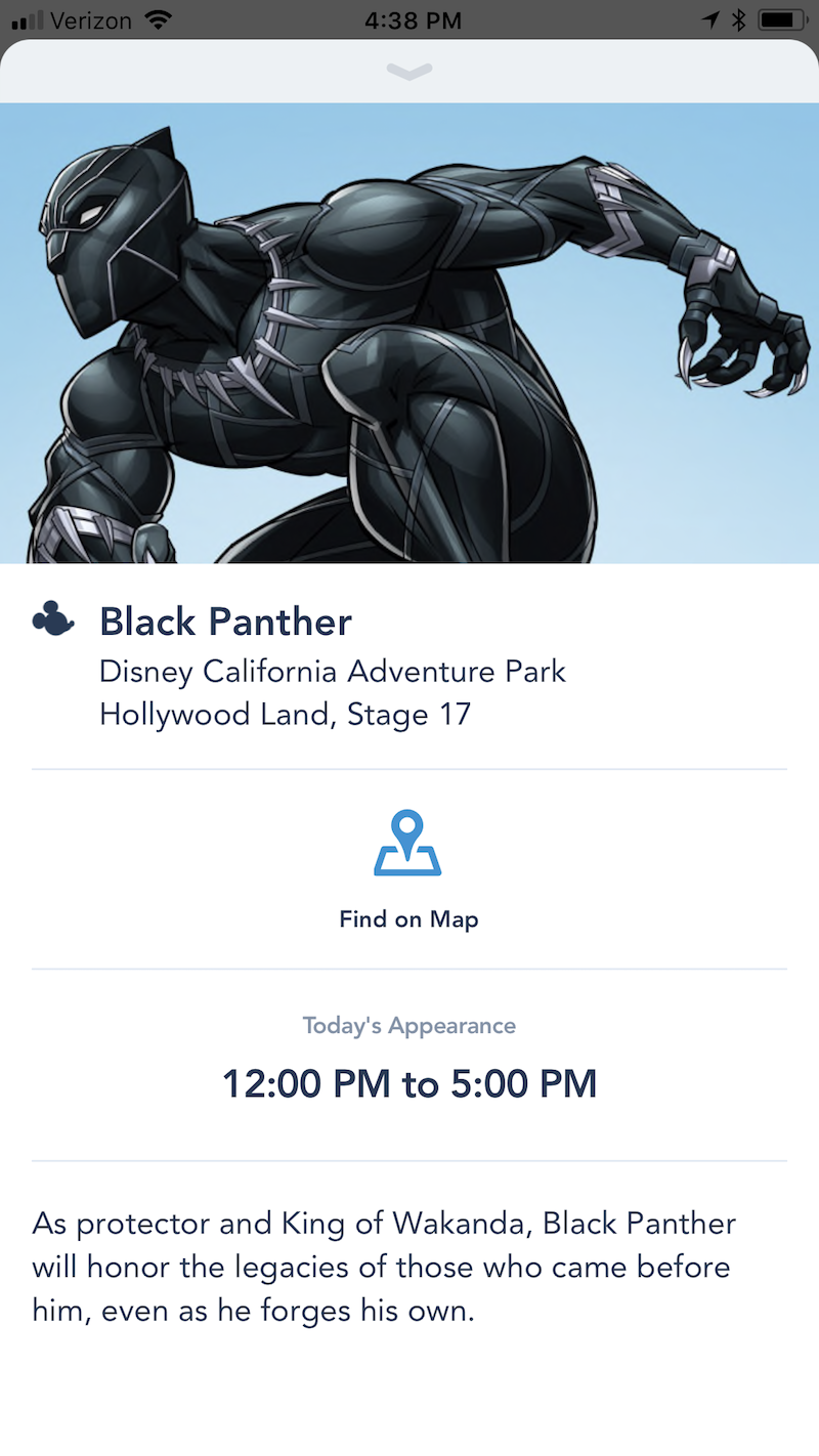 Black Panther Meet and Greet at Disney California Adventure