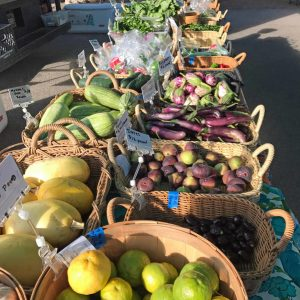 Nourishing Arizona With The Help of Farmers Markets in Tucson