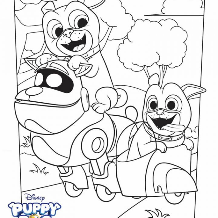 Puppy Dog Pals Rolly Coloring Page | Puppy Dog Pals Coloring Book | Disney  Jr. Rolly Coloring Page - YouTube | 720x720