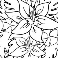 Hawaiian Tropical Flowers Coloring Page