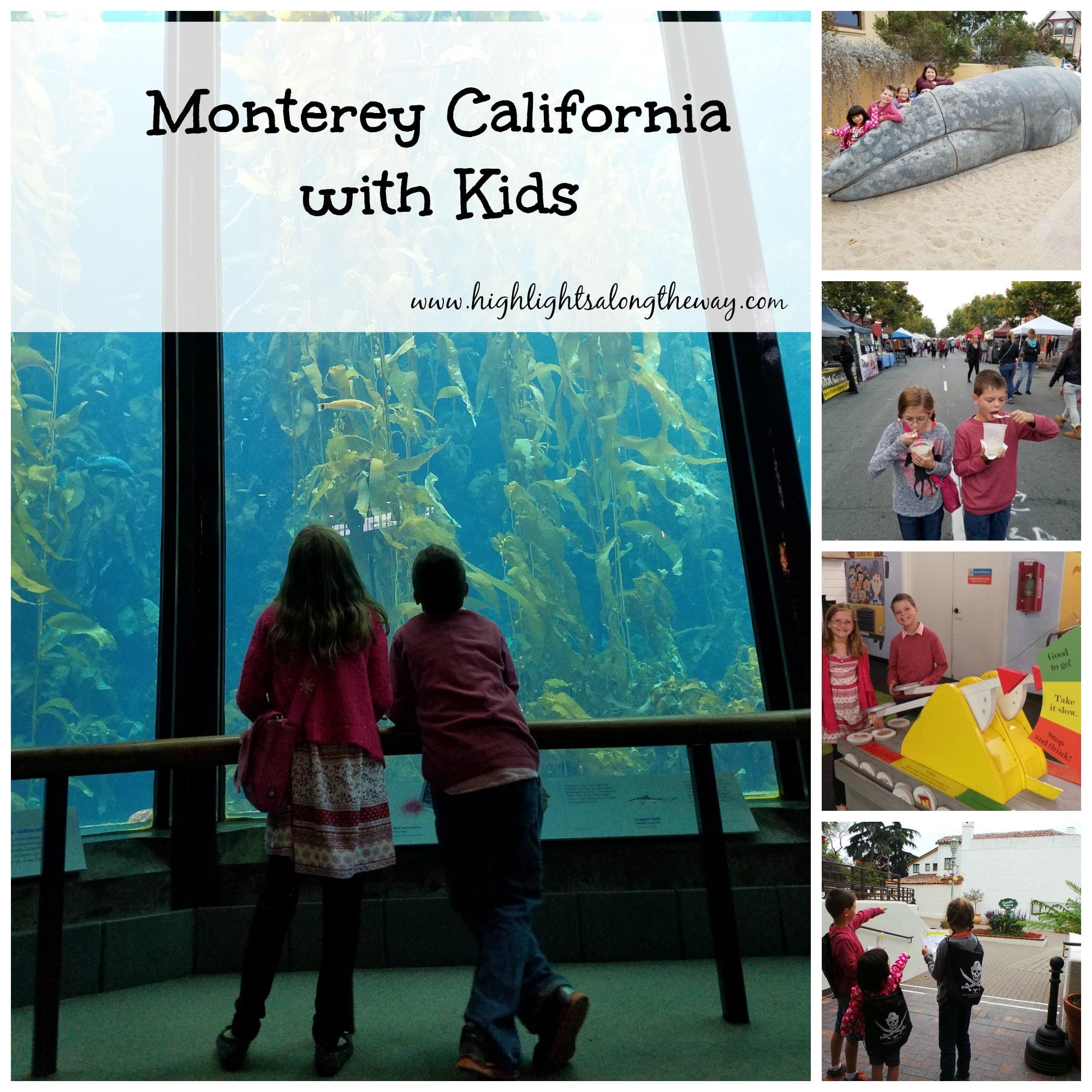 Monterey California with kids - Free jellyfish printable.